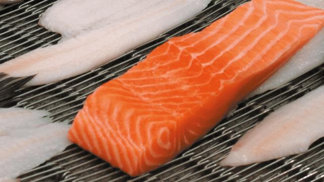JBT Frigoscandia Advantec M freezer_salmon