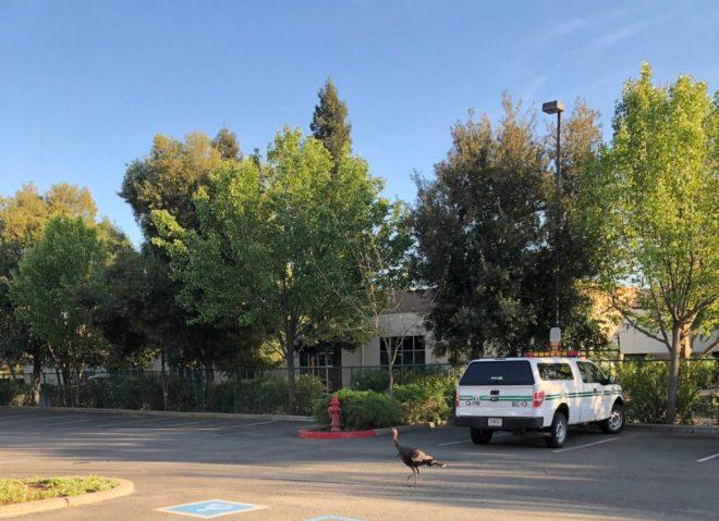 Post-Court Gathering | Golden State Killer Survivors andHBO
