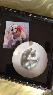 casting creation Janean dog