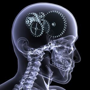cerebro-trabajando