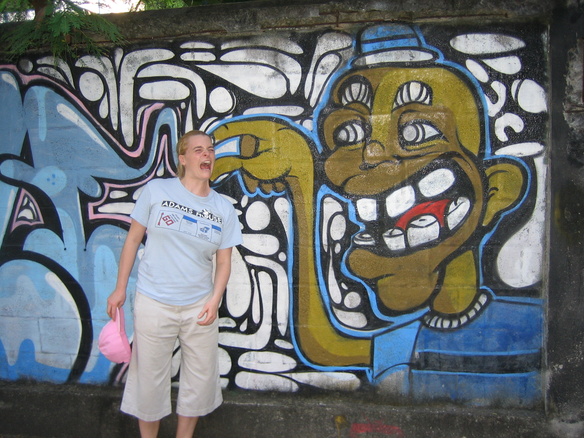 They have awesome graffiti in Rio.
