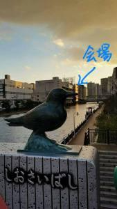 鳥さん現る