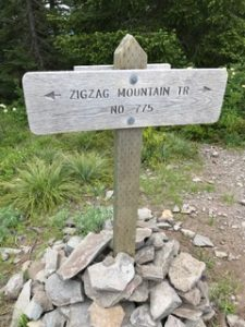 Zigzag Mountain Trail # 775