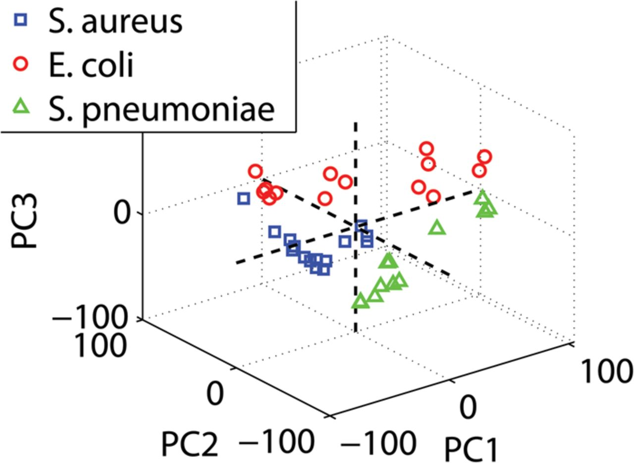 Rapid Identification Of Bacteria In Blood Cultures By Mass