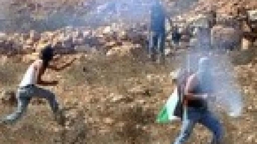 האסטרטגיה הפלסטינית: בינאום הסכסוך בשילוב עם אינתיפאדה עממית