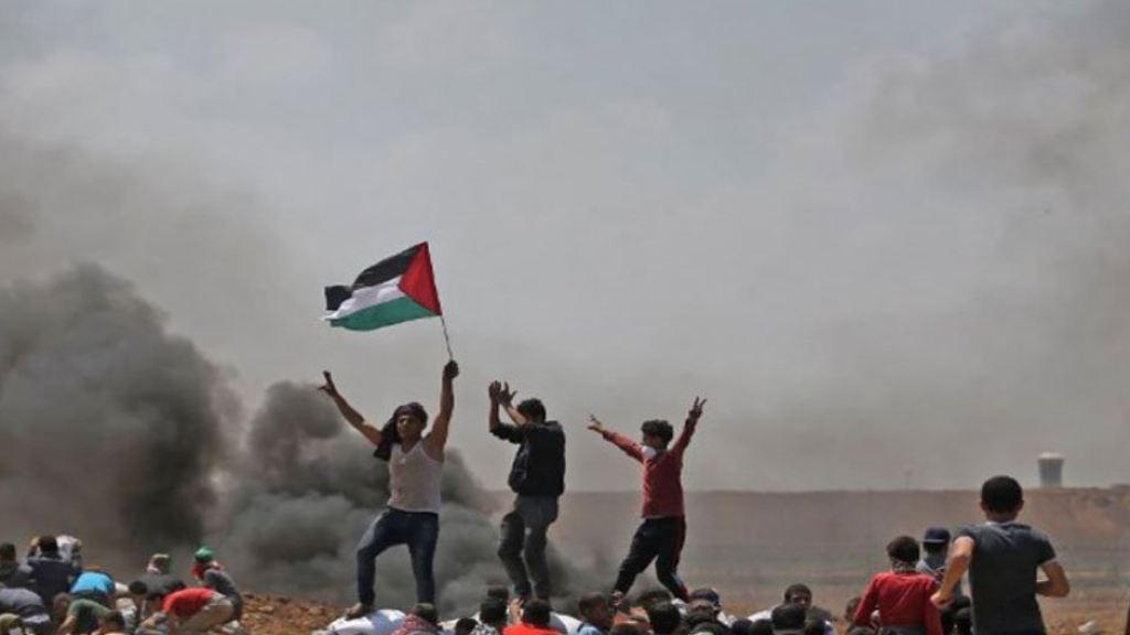 עיתון קנדי מפרסם: שיר הלל למאבק הפלסטיני