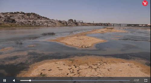The dangerously low water level of the Tigris River