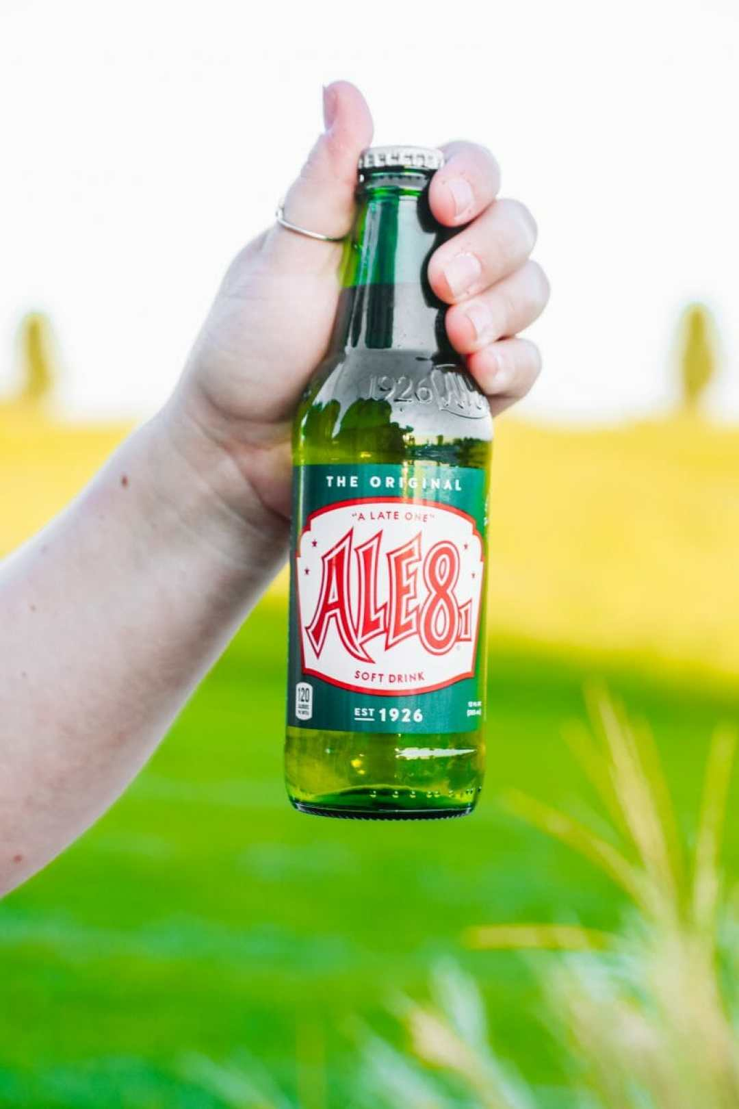 Ale 8 One