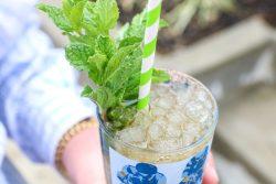 Kentucky Mint Julep Recipe
