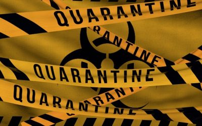 Etymology Excavation: quarantine