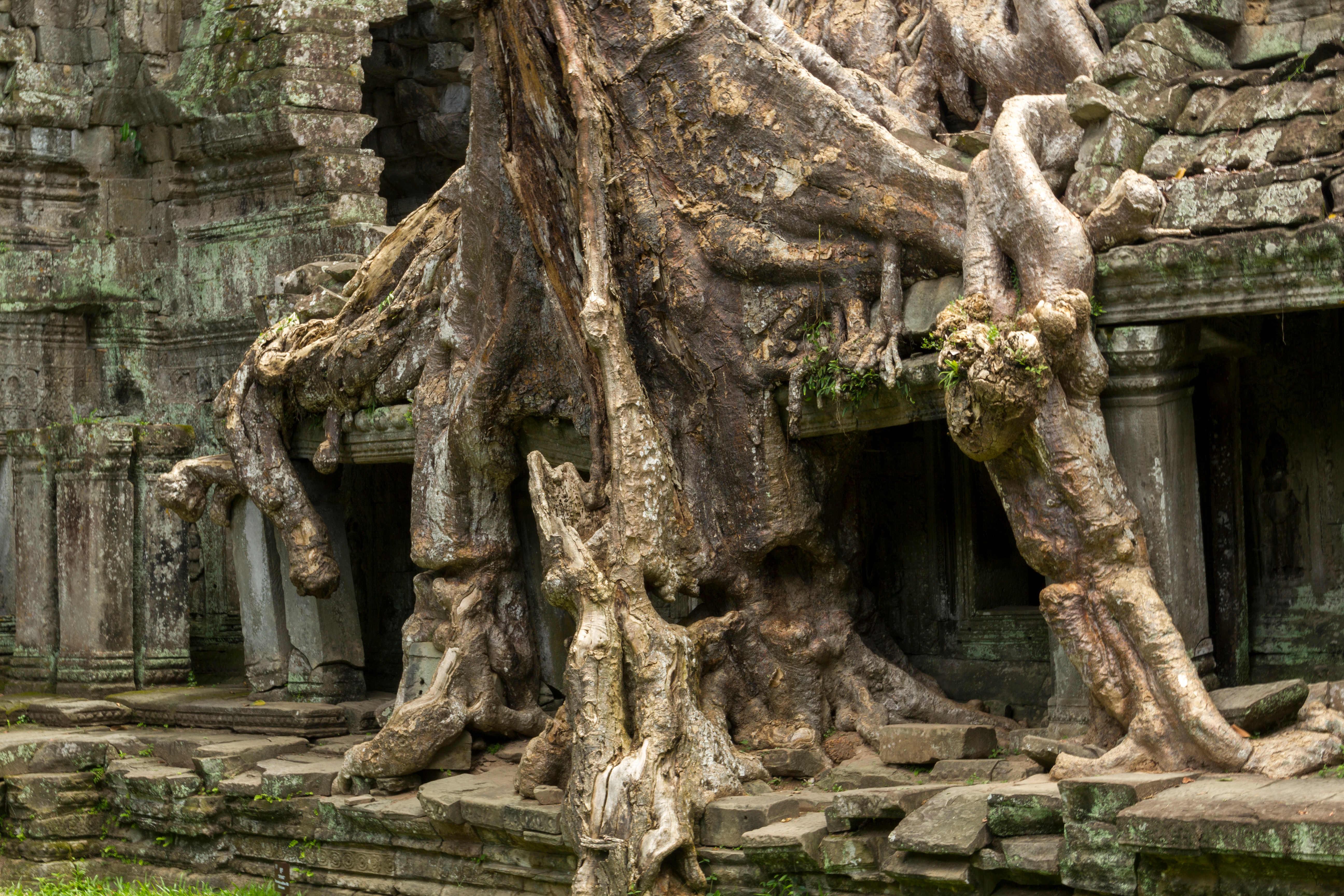 Preah Khan Temple at Angkor