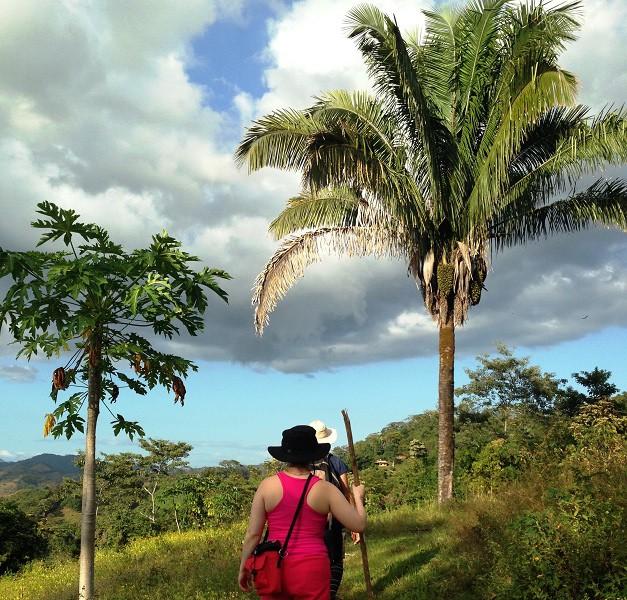 Pink shirt, orange shorts, black hat, and walking stick!