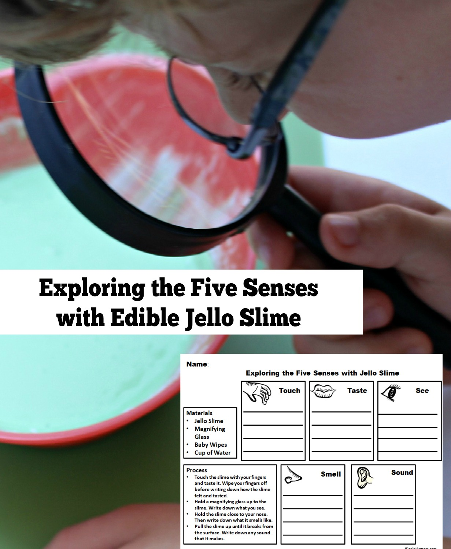 Exploring The Five Senses With Edible Jello Slime