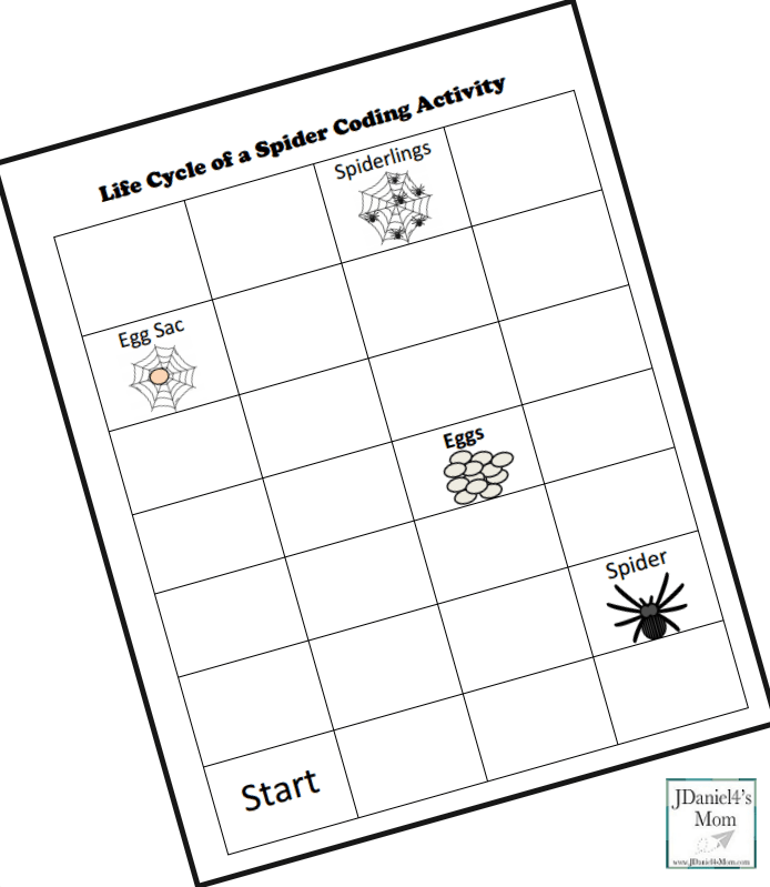 Life Cycle of a Spider Coding Printable