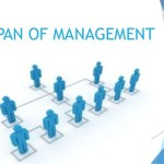 span of management