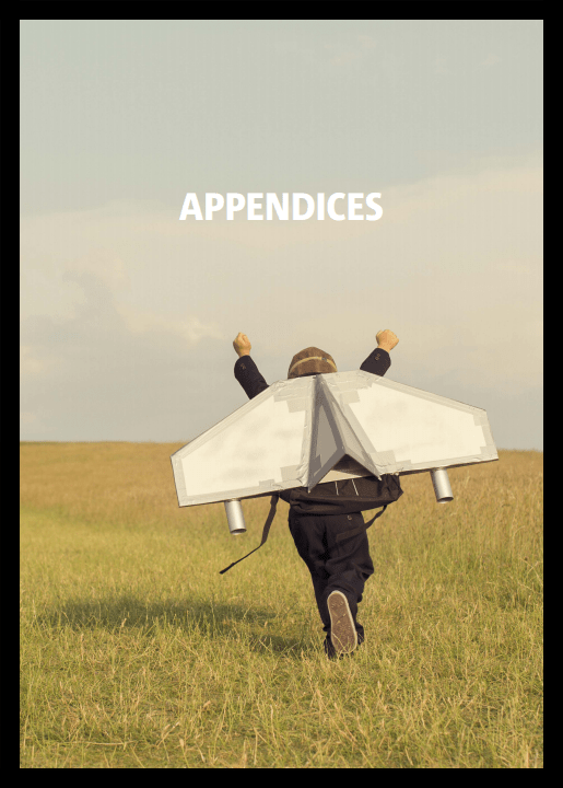 Appendices Cover