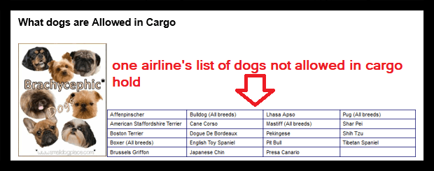 animals prohibited from carriage in cargo