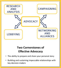 elements of advocacy