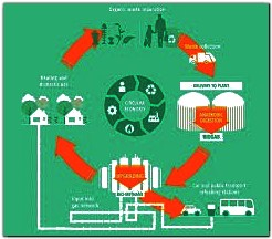 steps in biomethane process