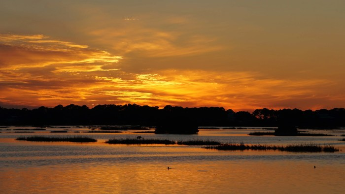 Cedar Key Sunset 1