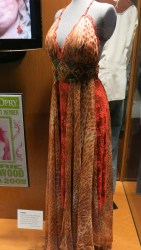 Carry Underwood's dress from American Idol