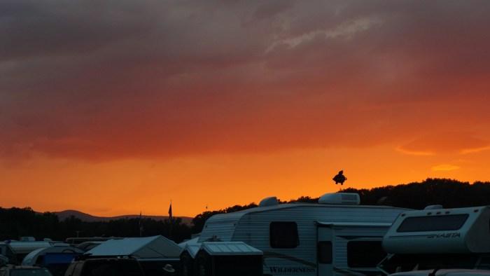 Sunset over Grey Fox