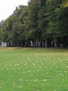 Bonner Herbst 1201