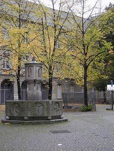 Bonner Herbst 1371