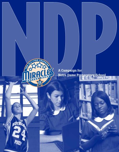 NDP All-Star Campaign Case Statement cover