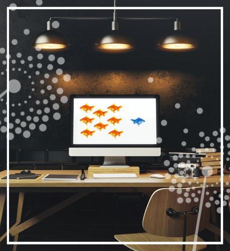 jdk design logo design tampa florida branding identity marketing