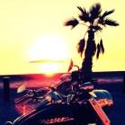 Harley Davidson @Palma Bay