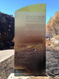 Serra de Tramuntana - after the fire...