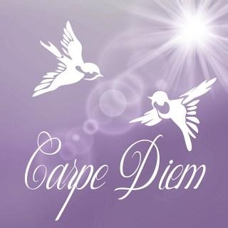 """Image avec deux oiseaux volant au-dessus du texte """"carpe diem"""""""