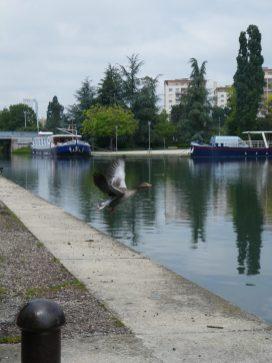 Port, canal,tourisme a velo,ballade