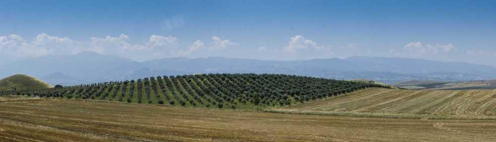 west anatolia