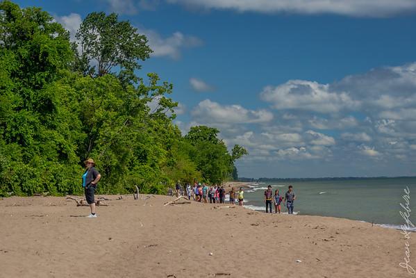 Beach at Pointe Pelee