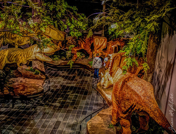 Dinosaur section of Museum of Nature
