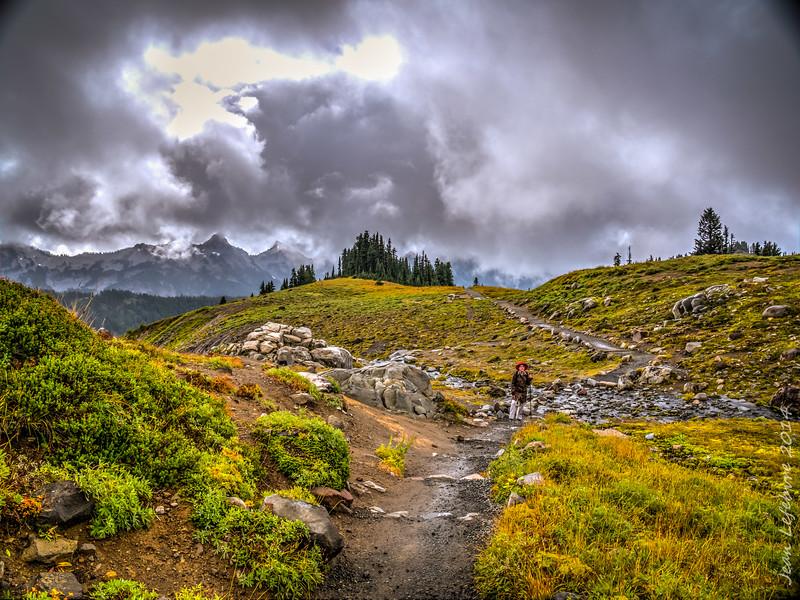 Hike up the Skyline Trail