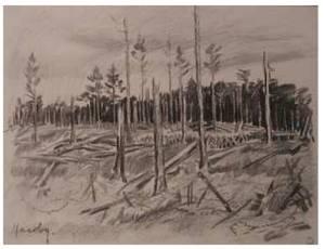 Une forêt après la bataille