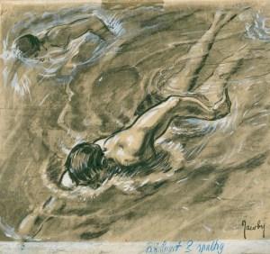 Der Hydroplan Schwimmer