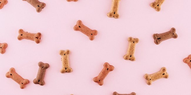 Bone shaped dog teats spread out on a pink background.