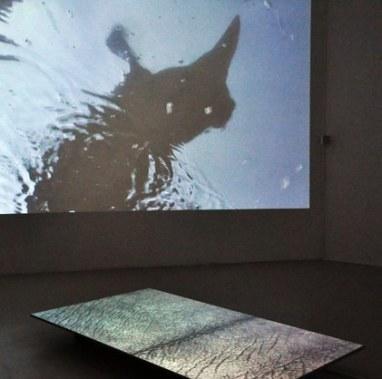 Le souffle et la peau, 2011 (exposition à la Villa Tamaris)
