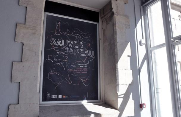 Sauver sa peau // 2017
