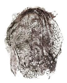 2018-Matière-grise (détail 3), 137 x 160 cm, dessin sur calque