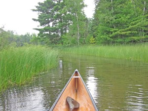 Channel between Bony Lake and Middle Eau Claire Lake