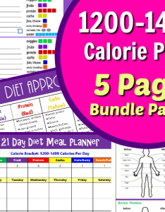 Calorie bracket tally sheets also day fix container sizes  portion control plan jeanieandjoan rh