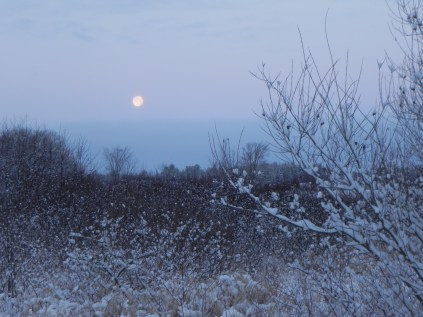 Full moon setting over new fallen snow