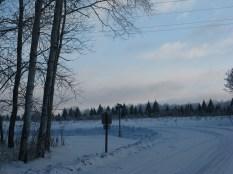 SnowymorningonwesterDec172013 005