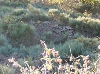 Anciens remparts gaulois