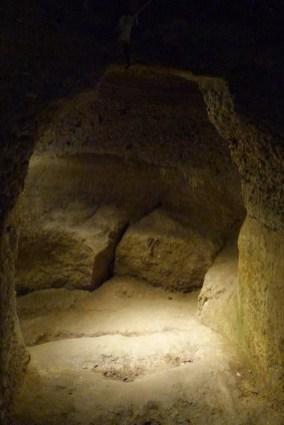 La cave (17)